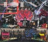 [USED]DIV/SECRET(初回限定盤/CD+DVD)