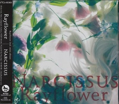 画像1: [USED]Rayflower/Narcissus